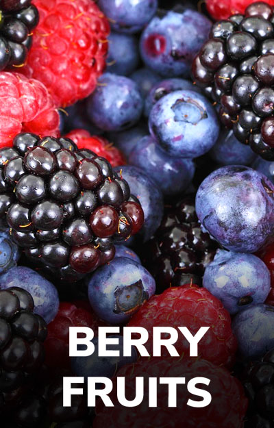 Berry Fruit E-liquids