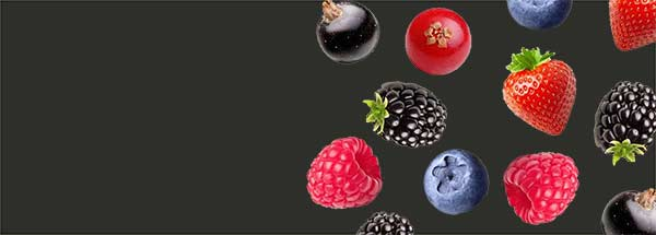 Berry Fruit Flavours